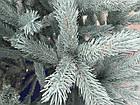 Ель Канадская Литая голубая 230 см , фото 3