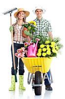 Садовник, услуги садовника, уход за садом Киев