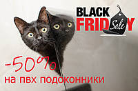 Black Friday 🐈