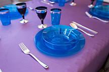 Тарелки глубокие стеклопластик Capital For People синие 300 мл 6 шт (DD-12)
