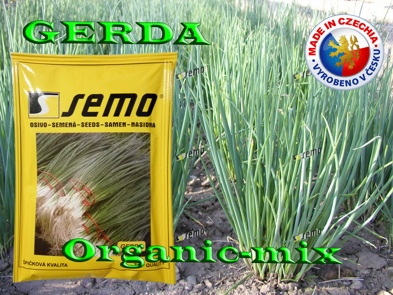 Лук на зелень ГЕРДА / GERDA, ТМ SEMO (Чехия), проф. пакет 50 грамм (ориентировочно 20 000 семян)