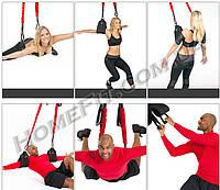 Тренажер на стропах с эспандерами 4D Pro Trainer - Bungee Fitness, фото 1