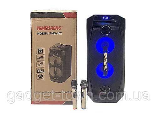 Акумуляторна колонка Temeisheng TMS-802 з підсилювачем (Max Sound)