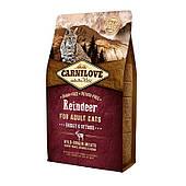 Carnilove Cat Raindeer Energy & Outdoor 6 кг, с мясом северного оленя для взрослых активных кошек