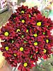 Бордовая кустовая хризантема Merlot (Мерлот)