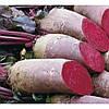 Семена свеклы столовой Ломако (Lomako), 100 000 семян, цилиндрическая PR (калибр 3,5 -4,25), Rijk Zwaan