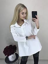 Пиджаки, рубашки, блузки женские