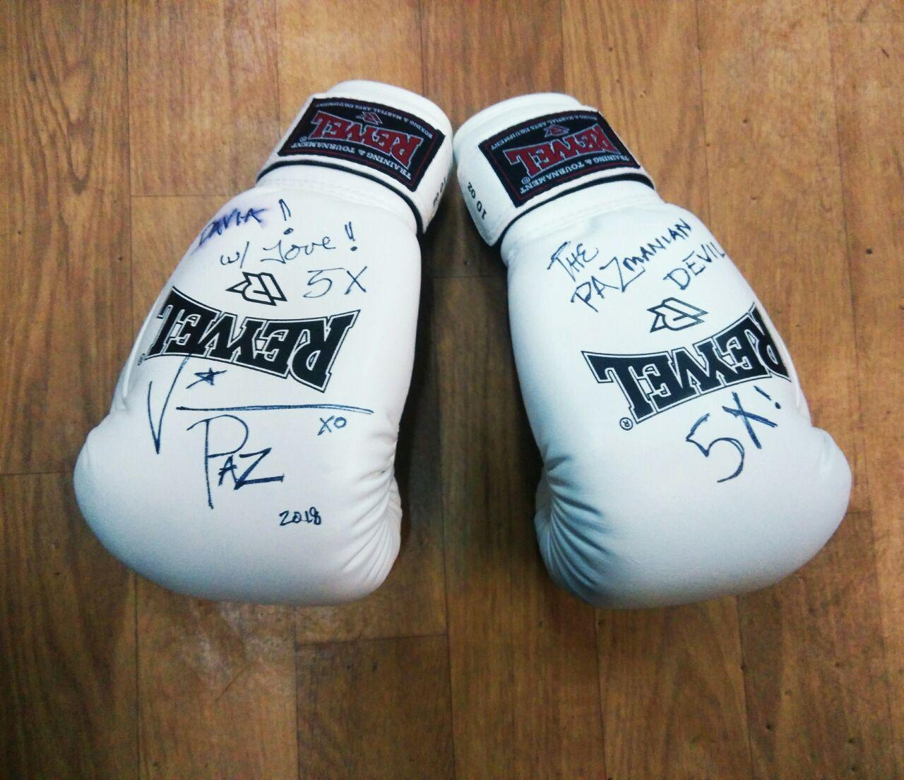 Боксерские перчатки с автографом  Винченцо Эдвард Пациенца