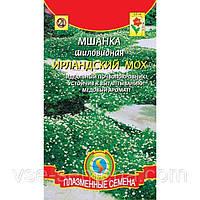 Семена Мшанка шиловидная Ирландский Мох  0,01 грамма Плазменные семена