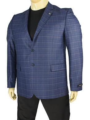 Синій чоловічий піджак Daniel Perry Puket BT C-045 у великому розмірі, фото 2