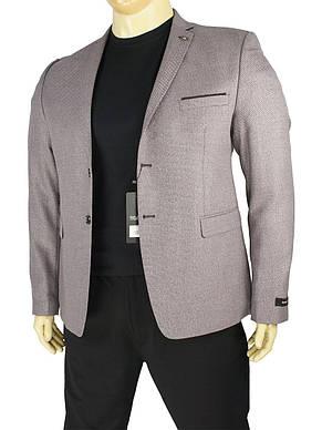 Світлий стильний чоловічий піджак Daniel Perry Nevada C-bordo великий розмір, фото 2