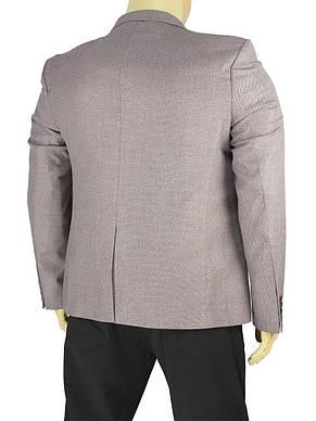Світлий стильний чоловічий піджак Daniel Perry Nevada C-bordo великий розмір, фото 3