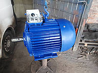 Электродвигатель 37 кВт 1000 об/мин трехфазный