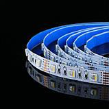 Светодиодная лента BIOM Professional G.2 5050-60 RGB-W(6500K), негерметичная, 5метров, фото 2