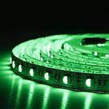 Светодиодная лента BIOM Professional G.2 5050-60 RGB-W(6500K), негерметичная, 5метров, фото 9