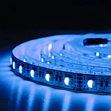 Светодиодная лента BIOM Professional G.2 5050-60 RGB-W(6500K), негерметичная, 5метров, фото 7