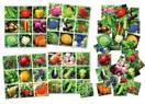 """Суперлото """"Овощи, фрукты, ягоды"""", фото 2"""