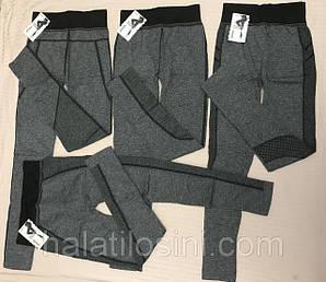 Женские и Мужские штаны, колготы, лосины, гамаши, кальсоны оптом