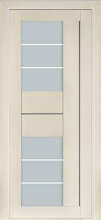 Межкомнатные  двери Терминус №172, фото 2