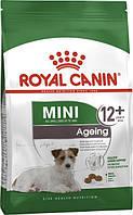Royal Canin Mini Ageing +12 1,5 кг - корм для собак мини пород в возрасте старше 12 лет