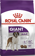 Royal Canin Giant Adult 15кг- корм для собак гигантских пород