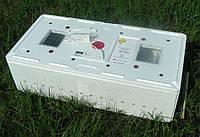 Инкубатор цифровой электронный ИБ-100 с механическим устройством переворота яиц, фото 1