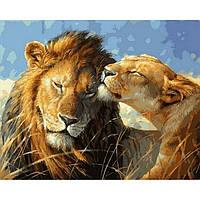 Картина раскраска по номерам на холсте 40*50см Babylon VP991 Влюбленные львы