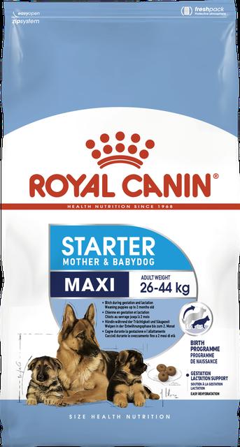 Royal Canin Maxi Starter 15кг-корм для щенков до 2 месяцев, беременных и кормящих сук крупных пород