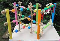 Игровая площадка для попугая Тренажор