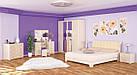 Шафа в спальню з ДСП 4Д Токіо Мебель Сервіс, фото 5