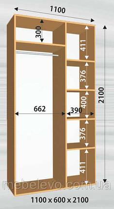 Шкаф-купе 2 двери Стандарт 110х60 h-210, ТМ Феникс, фото 2