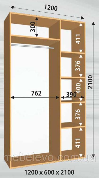 Шкаф-купе 2 двери Стандарт 120х60 h-210, ТМ Феникс