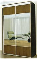 Шкаф-купе 2 двери Стандарт 120х60 h-210, ТМ Феникс, фото 2