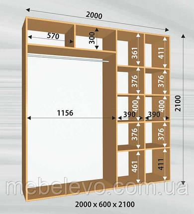 Шкаф-купе 2 двери Стандарт 200х60 h-210, ТМ Феникс, фото 2
