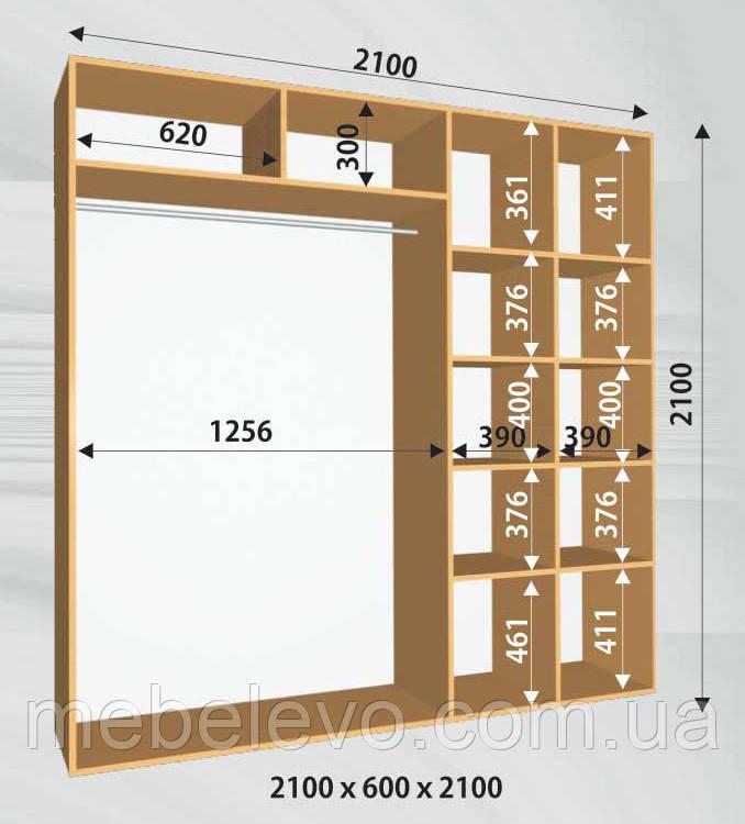 Шкаф-купе 2 двери Стандарт 210х60 h-210, ТМ Феникс