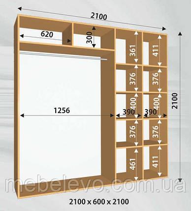 Шкаф-купе 2 двери Стандарт 210х60 h-210, ТМ Феникс, фото 2
