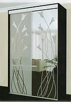 Шкаф-купе 2 двери Стандарт 210х60 h-210, ТМ Феникс, фото 3