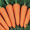 Морковь АБАКО 1.6 - 1.8  1 млн. семян (возможен безнал)