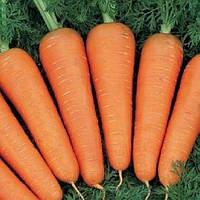Морква ВІКТОРІЯ 1.6 - 1.8 1 млн. насінин (можливий безнал), фото 1
