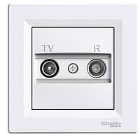 Розетка TV-R концевая белая Schneider asfora EPH3300121