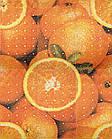 Панно Orange Big 885x1190
