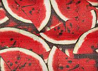 Панно Watermelon Big1475x1190