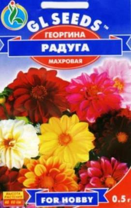 Георгина махровая Радуга - 0.3г - Семена цветов, фото 2