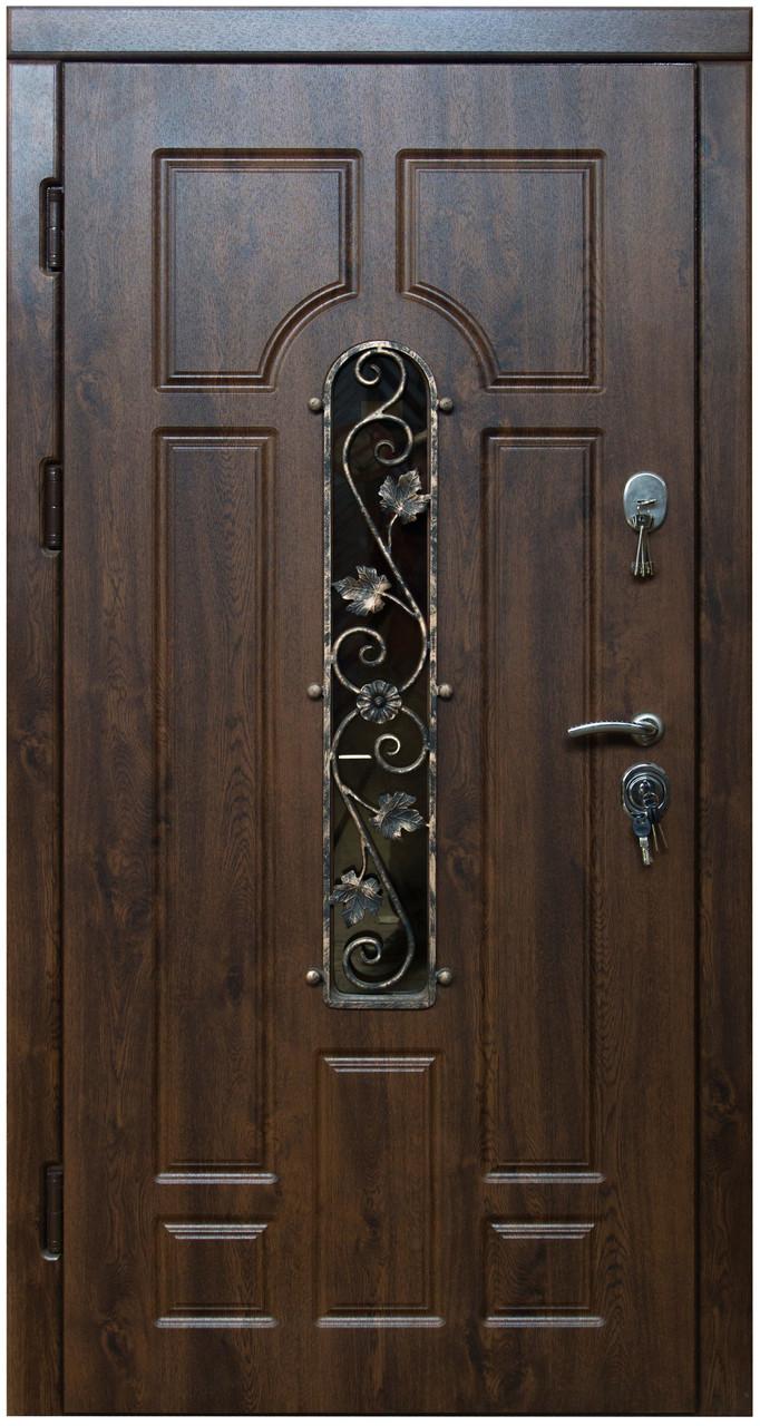 Уличные  входные двери Арка винорит с ковкой и стеклом