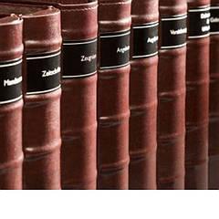 Libro2r Папка для документов Libro с  2-х  кольцевым механизмом.