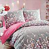 Комплект постельного белья 5080 (Семейный)