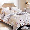 Комплект постельного белья 5048 (Семейный)