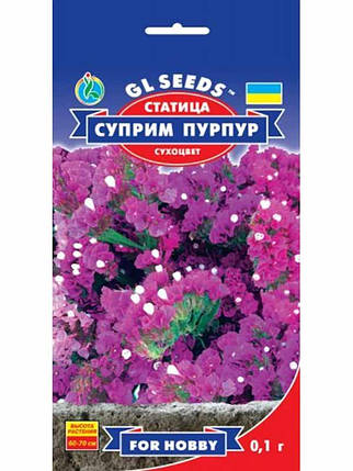 Статица Суприм Пурпур - 0.1 г - Семена цветов, фото 2