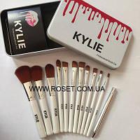 Профессиональный набор кистей Kylie Professional Brush Set