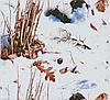 "Пленка аквапринт ""Камуфляж"" LRD349A, Харьков (ширина 100 см)"